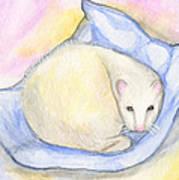 Ferret's Day Off Art Print