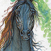 Ferryt Polish Black Arabian Horse Art Print