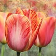 Festive Tulips Art Print
