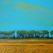 Field 5 Art Print