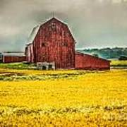 Field And Barn Art Print