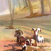Field Day Art Print
