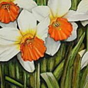 Field Of Daffodils Art Print