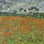 Field Of Poppies, Auvers-sur-oise, 1890 Art Print
