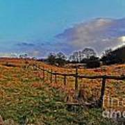 Field Of The Cotswold Art Print