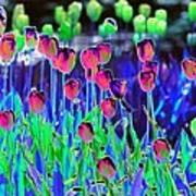 Field Of Tulips - Photopower 1496 Art Print