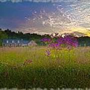 Field Of View Sunset Art Print
