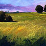Field Textures Art Print