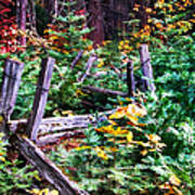 Fields And Fences Of Wawona In Yosemite National Park Art Print