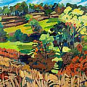 Fields In Autumn Art Print