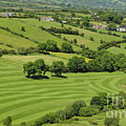 Fields In Northern Ireland Art Print