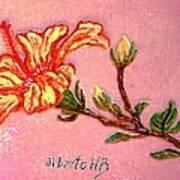 Fiery Hibiscus Art Print