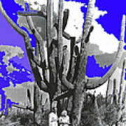 Film Homage Victor Fleming Jean Harlow Bombshell 1933 Saguaro Nat'l Monument Tucson 2008 Art Print