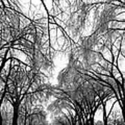 Film Noir Cinematographer Burnett Guffey Glenn Ford Framed 1947  2 Summit Avenue St. Paul Mn 1966 Art Print