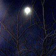 Film Noir Joseph H Lewis So Dark The Night 1946 Moon Trees Casa Grande Arizona 2000 Art Print