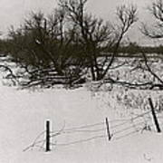 Film Noir Nicholas Ray Ida Lupino On Dangerous Ground 1952 1 Rko Radio Fence Near Aberdeen Sd 1965 Art Print