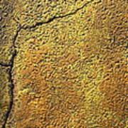 Film Noir Pat O'brien Crack-up 1946 Rko Radio Parking Lot Coolidge Arizona 2004 Art Print