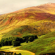 Find The Soul. Golden Hills Of Wicklow. Ireland Print by Jenny Rainbow