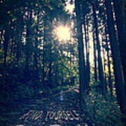 Find Yourself Go Run No. 6 - Forest With Sun Flare Art Print