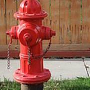 Fire Hydrant 3 Art Print