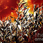 Fire In The Corn Field Art Print