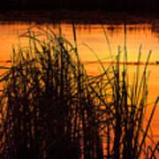 Fire On The Marsh Art Print