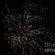 Fireworks 16 Art Print
