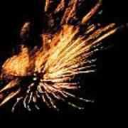 Fireworks 2 Print by Stephanie Kendall