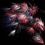 Fireworks 9 Art Print by Sandy Swanson
