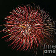 Fireworks At Night 5 Art Print