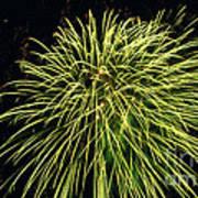 Fireworks At Night 8 Art Print