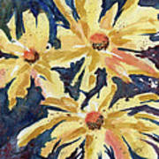 Fireworks In Flower Art Print