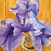 First Iris Of The Season Art Print