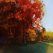 First Light Art Print by Kris Parins