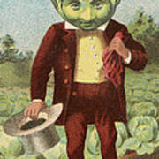 First Premium Cabbage Head Art Print