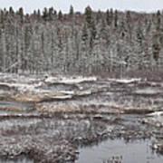 First Snow-algonquin Provincial Park Art Print