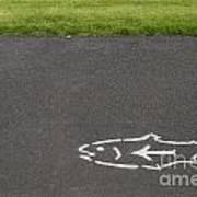 Fish And Arrow On Pavement Art Print