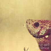 Fish Can Be Sad Too Art Print