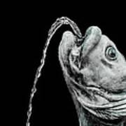 Fish Head Fountain Art Print