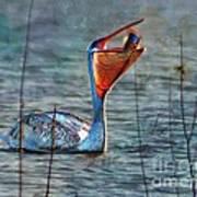 Fish In Art Print