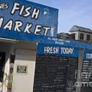 Fish Market In Hobart Art Print