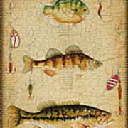 Fish Trio-c-basket Weave Art Print