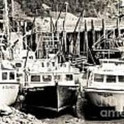 Fishing Boats In Alma Art Print