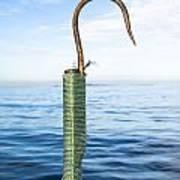 Fishing Gaff Art Print