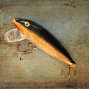 Fishing Lure II Art Print