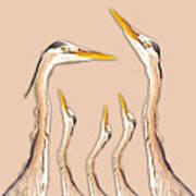 Five Herons Art Print