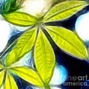 Five Leaves. Art Print