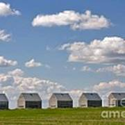Five Sheds On The Alberta Prairie Art Print