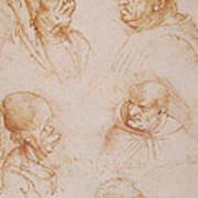 Five Studies Of Grotesque Faces Art Print by Leonardo da Vinci