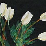 Five White Tulips  Print by Lynda K Boardman